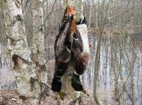 Распоряжение о весенней охоте в хозяйстве ИРО в 2012 году