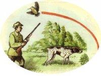 Охота с подружейными собаками в 2013 году на болотно-луговую дичь открывается с 25 июля, на боровую, полевую и степную дичь с 5 августа