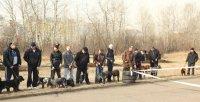 Выставка «Охотничье собаководство. Иркутск – 2013»